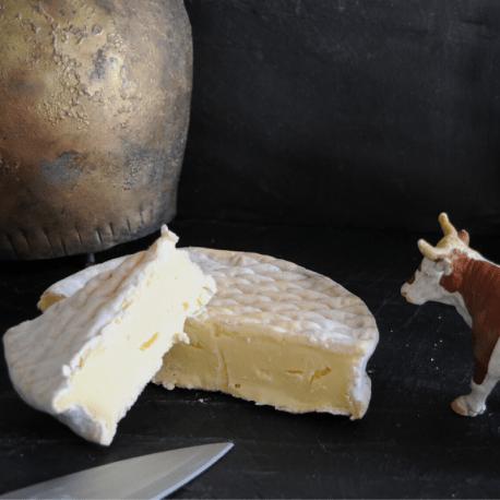 GOURMANDIN Fromage de vache BIO (env 100 GR)