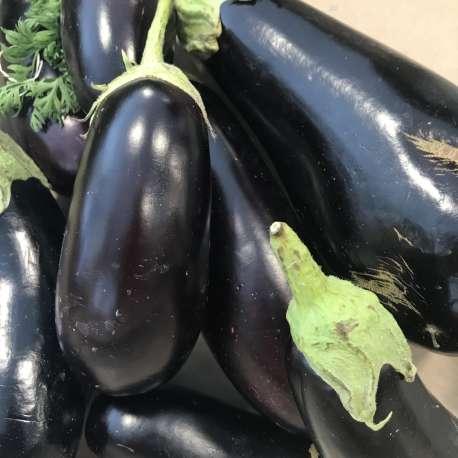 aubergine violette (au kg)
