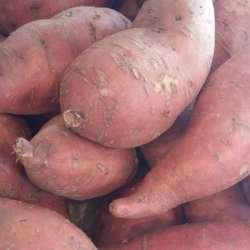 Patates douces  (LES 100 GR)